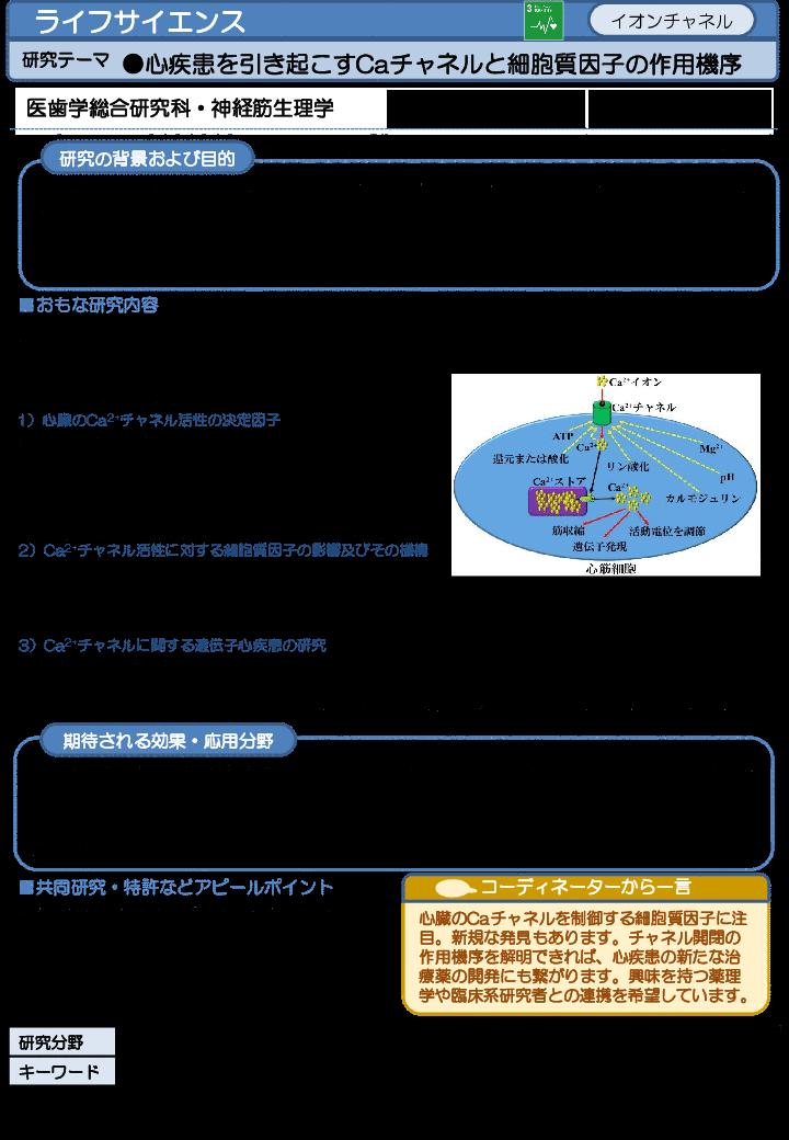心疾患を引き起こすCaチャネルと細胞質因子の作用機序