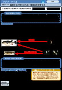 寄生虫に寄生されない養殖魚を育種する