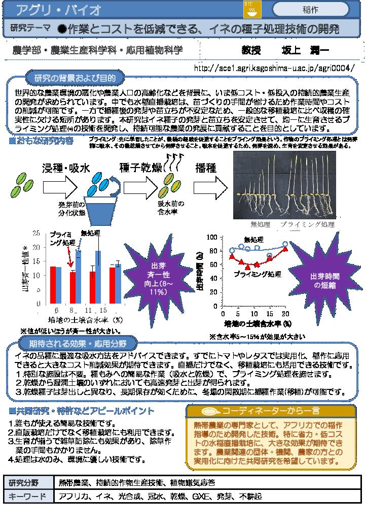 作業とコストを低減できる、イネの種子処理技術の開発