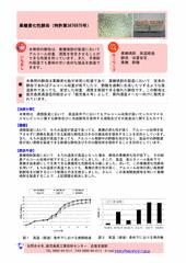 果糖資化性酵母(特許第3876975号)