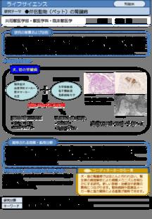 伴侶動物(ペット)の腎臓病