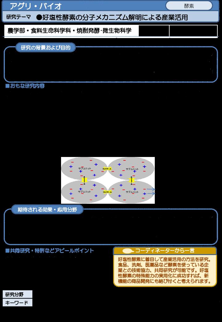 好塩性酵素の分子メカニズム解明による産業活用