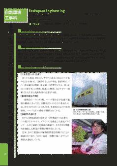 植物工場による薬用植物、機能性野菜栽培法の開発