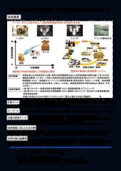 有機性廃棄物(焼酎蒸留粕)の高度資源化技術の開発(その2)